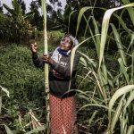 Social Uplift Women Africa